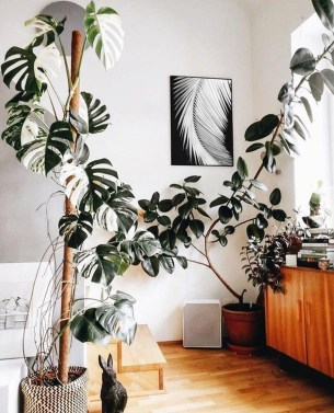 Smart Interior Design Ideas With Plants For Home 35