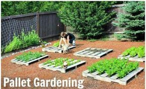 Brilliant Diy Projects Pallet Garden Design Ideas On A Budget 02