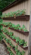 Brilliant Diy Projects Pallet Garden Design Ideas On A Budget 33