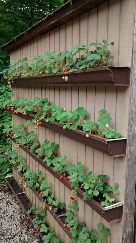 Brilliant Diy Projects Pallet Garden Design Ideas On A Budget 33
