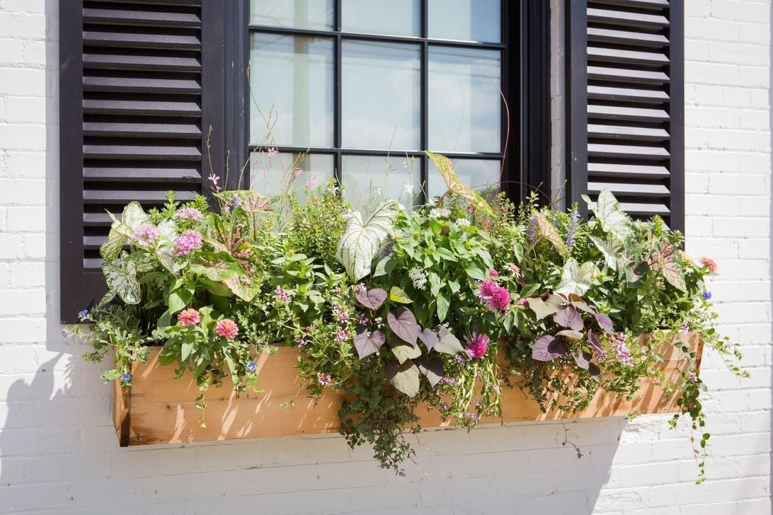 Fabulous Exterior Decoration Ideas With Flower In Window 13