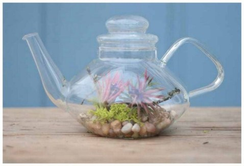 Inspiring Diy Teacup Mini Garden Ideas To Add Bliss To Your Home 20