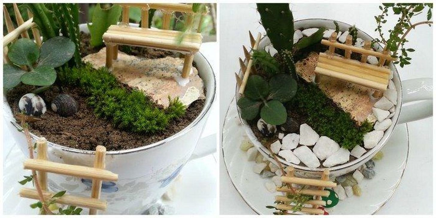 Inspiring Diy Teacup Mini Garden Ideas To Add Bliss To Your Home 26