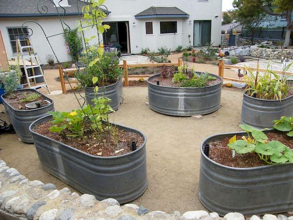 Lovely Vegetable Garden Decoration Ideas For You 16