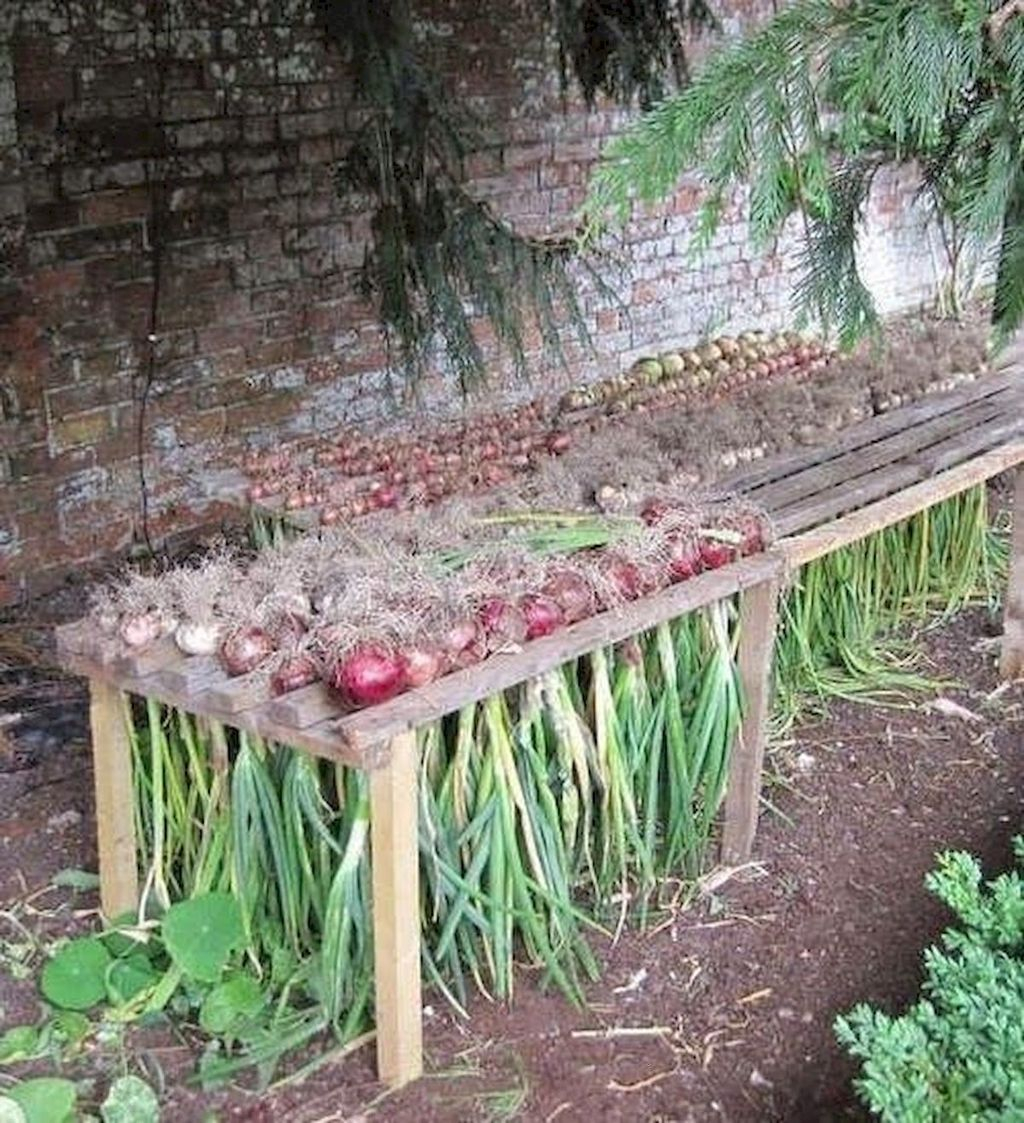 Lovely Vegetable Garden Decoration Ideas For You 20