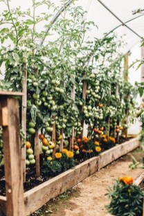 Lovely Vegetable Garden Decoration Ideas For You 34