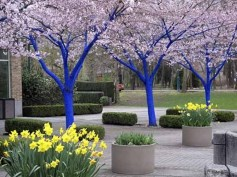 Stylish Diy Painted Garden Decoration Ideas For A Colorful Yard 04