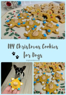 Adorable Diy Christmas Lights Cookies Ideas For Your Décor That Looks Cool09