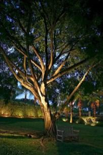 Unusual Lights Design Ideas To Beautify The Garden19