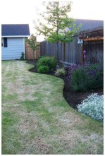 Attractive Backyard Landscaping Design Ideas On A Budget Can You Try 02