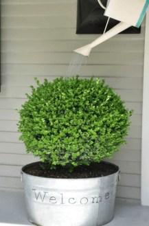 Chic Summer Planter Design Ideas For Summer Outdoor Pool 02