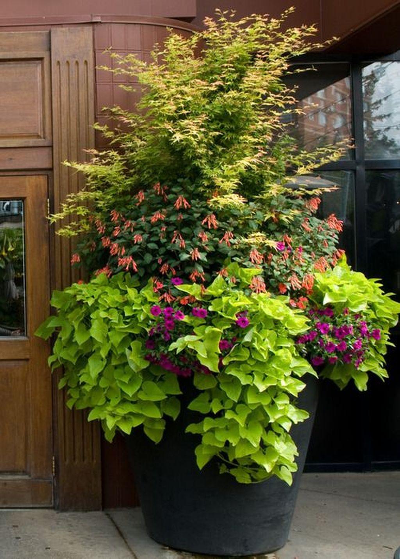 Chic Summer Planter Design Ideas For Summer Outdoor Pool 07