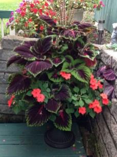 Chic Summer Planter Design Ideas For Summer Outdoor Pool 31