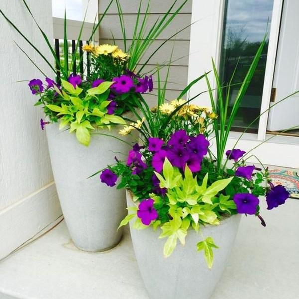 Impressive Summer Planter Design Ideas For Front Yard Decoration 08