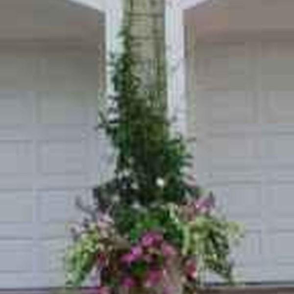 Impressive Summer Planter Design Ideas For Front Yard Decoration 09