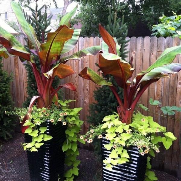 Impressive Summer Planter Design Ideas For Front Yard Decoration 10