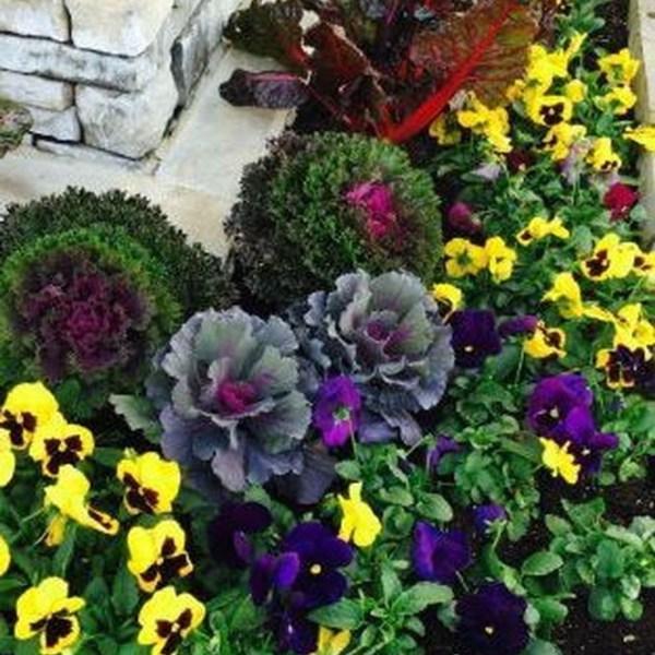 Impressive Summer Planter Design Ideas For Front Yard Decoration 17