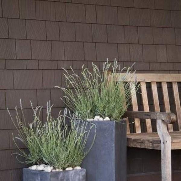 Impressive Summer Planter Design Ideas For Front Yard Decoration 21