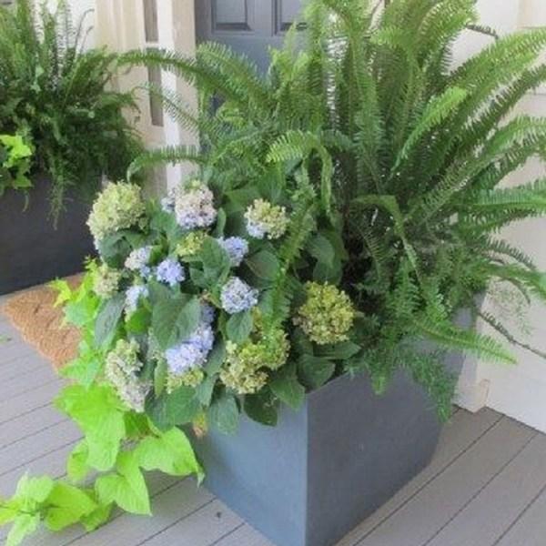 Impressive Summer Planter Design Ideas For Front Yard Decoration 40