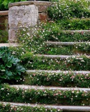 Inexpensive Diy Garden Landscaping Ideas On A Budget To Try 01