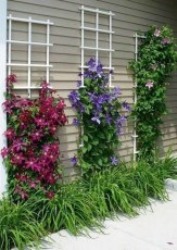 Inexpensive Diy Garden Landscaping Ideas On A Budget To Try 03