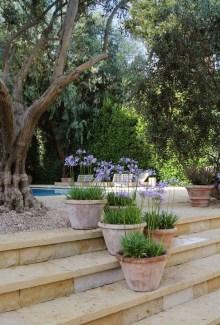Awesome Mediterranean Garden Design Ideas For Your Backyard 05