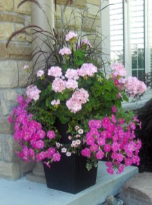 Dreamy Front Door Flower Pots Design Ideas To Increase Your Home Beauty 01