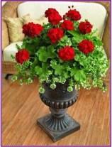 Dreamy Front Door Flower Pots Design Ideas To Increase Your Home Beauty 03