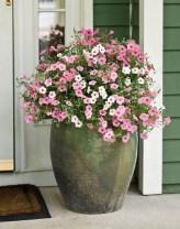 Dreamy Front Door Flower Pots Design Ideas To Increase Your Home Beauty 11