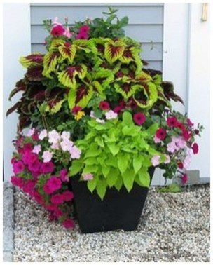 Dreamy Front Door Flower Pots Design Ideas To Increase Your Home Beauty 16