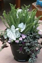 Dreamy Front Door Flower Pots Design Ideas To Increase Your Home Beauty 23