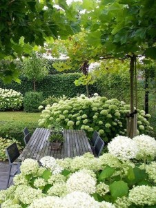 Elegant White Plants Garden Design Ideas For You 05