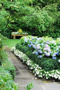 Elegant White Plants Garden Design Ideas For You 24