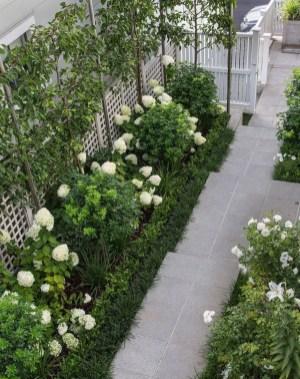 Elegant White Plants Garden Design Ideas For You 27