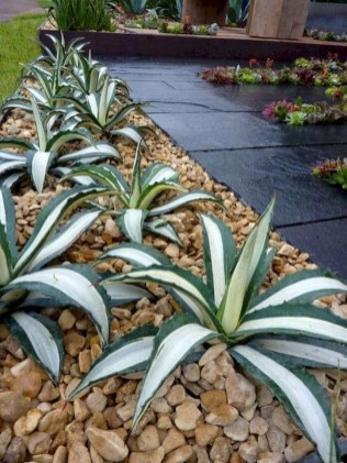 Inspiring Rock Garden Ideas To Make Your Landscaping More Awesome 34