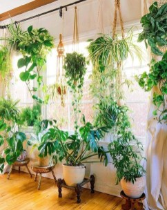 Favorite Home Patio Design Ideas With Best Hanging Plants 04