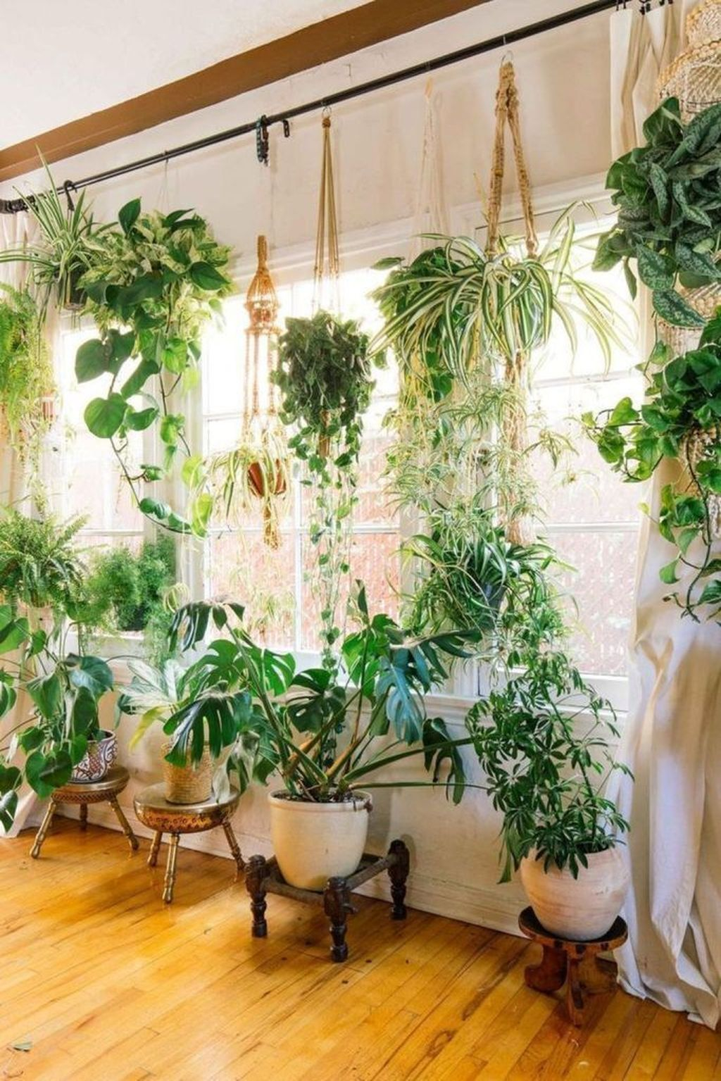 Favorite Home Patio Design Ideas With Best Hanging Plants 16