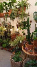 Favorite Home Patio Design Ideas With Best Hanging Plants 28