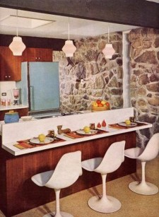 Splendid Mid Century Kitchen Design Ideas To Try 07