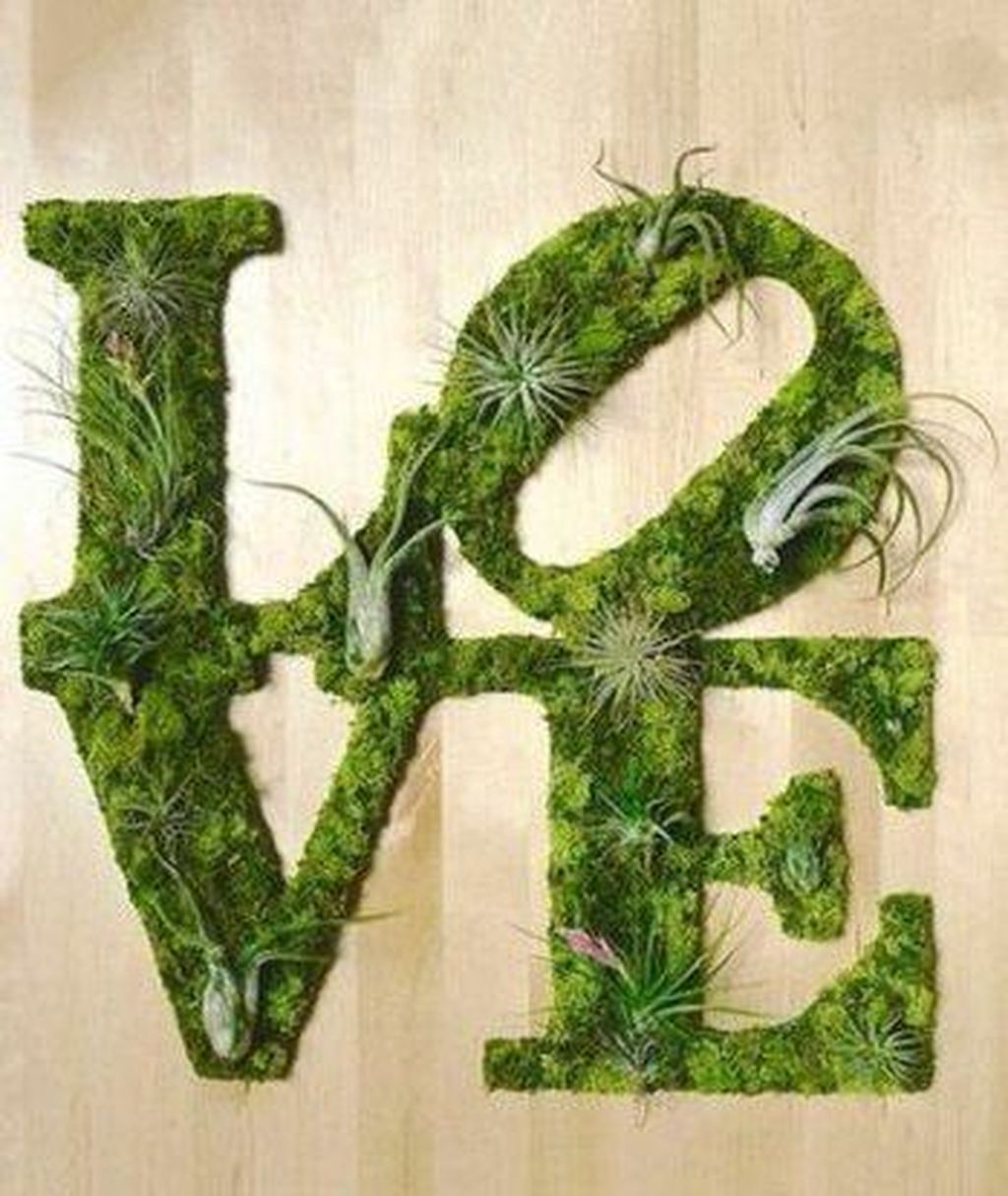 Delicate Natural Moss Wall Art Decorations Ideas To Try Right Now 02