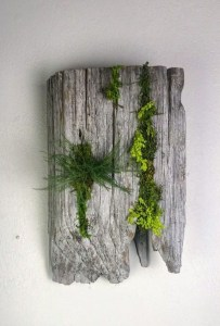 Delicate Natural Moss Wall Art Decorations Ideas To Try Right Now 03