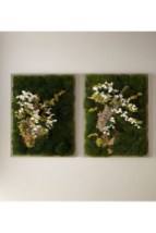 Delicate Natural Moss Wall Art Decorations Ideas To Try Right Now 04