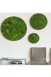 Delicate Natural Moss Wall Art Decorations Ideas To Try Right Now 14