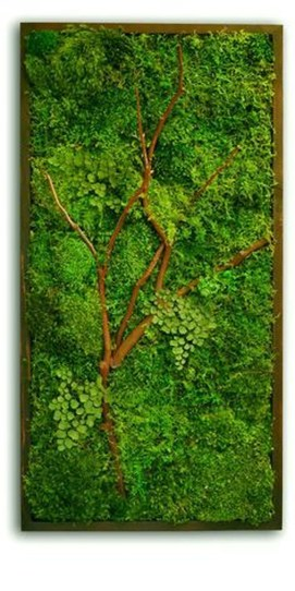 Delicate Natural Moss Wall Art Decorations Ideas To Try Right Now 26