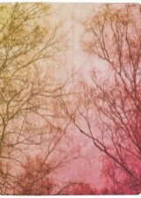 Sophisticated Pink Winter Tree Design Ideas That Looks So Cute 03