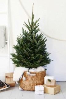 Delicate Tiny Winter Trees Design Ideas That You Should Try 32