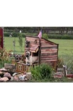 Interesting Outdoor Dog Houses Design Ideas For Pet Lovers 09