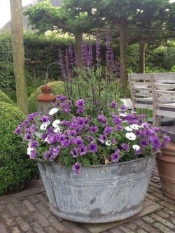 Luxury Container Garden Design Ideas For Your Landscaping Design 21