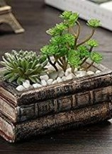 Splendid Recycled Planter Design Ideas That You Need To Try 16