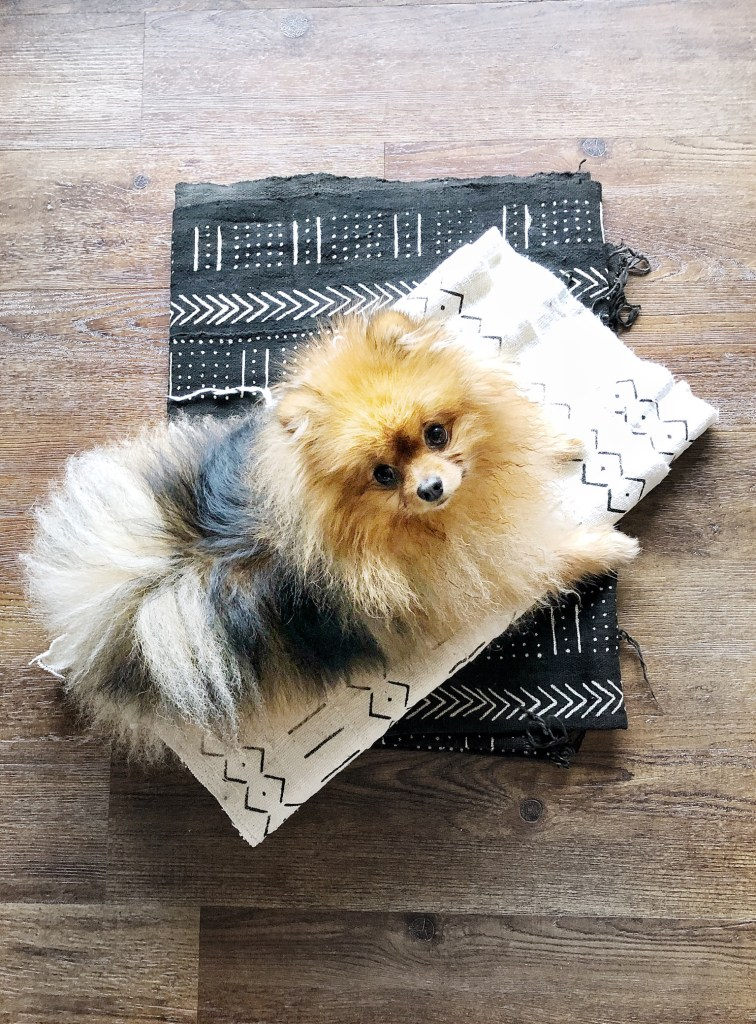 Make your own dog bed by following my simple DIY tutorial. I made this dog bed over the weekend in just two hours. My sewing machine rarely sees the light of day and I am by no means an expert, but I hope this DIY will inspire you to make your own dog bed. If I can do it, so can you!